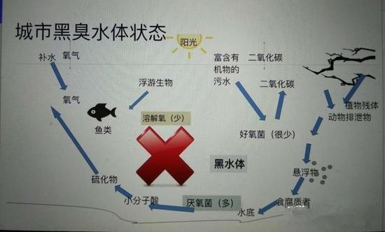 江苏亿元投资治污新技术 石墨烯能否治理黑臭水体?