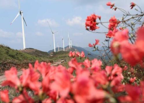江西泰和:风力发电助力乡村振兴