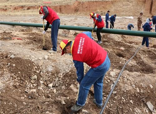 国网甘肃肃南县供电公司:积极参加植树 营造满绿家园