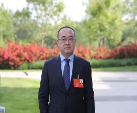 【两会】全国人大代表潘敬东:建议国家构建『环北京特高压环网』