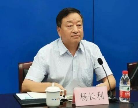 任职总经理半年后,杨长利任中广核董事长