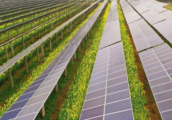 广东清远建设小型农光互补光伏发电站,工程总投资1.5亿元