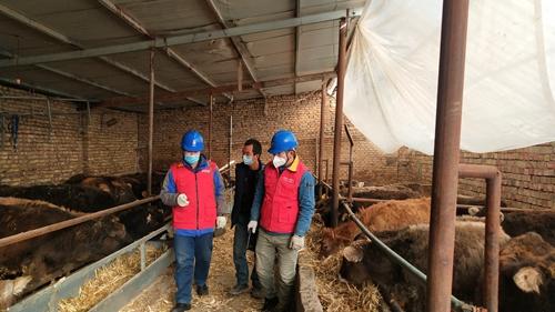 国网伊犁供电公司贴心服务助力地方养殖业发展