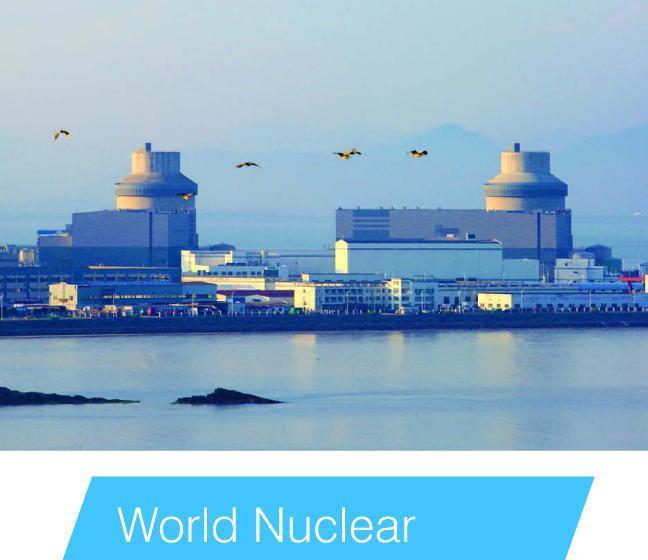 2020年世界核能运行报告