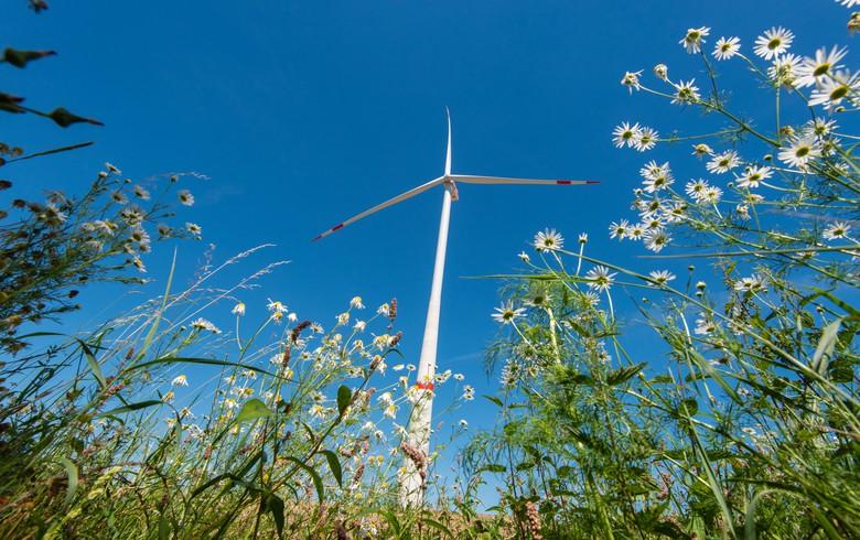 通用电气获西班牙1吉瓦风力涡轮机订单