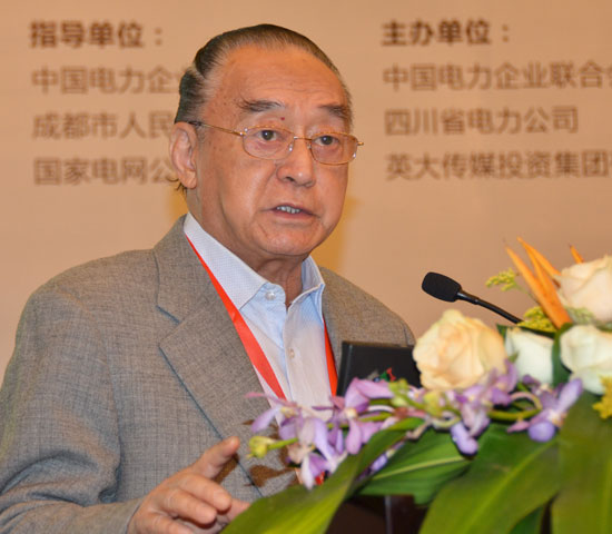 全球能源互联网比核聚变更值得期待——访中国科学院院士清华大学电机系教授卢强