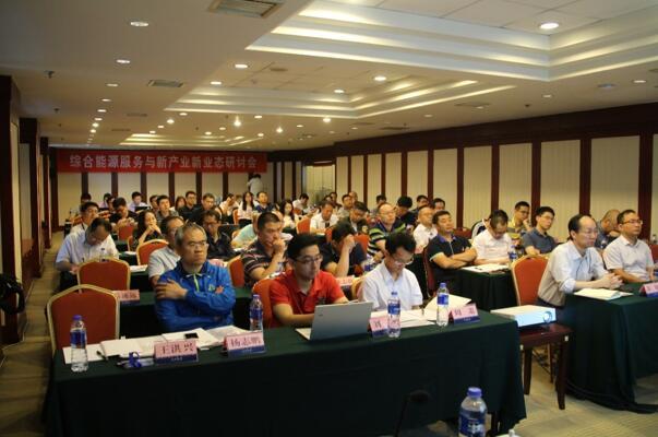 综合能源服务与新产业新业态研讨会在京召开