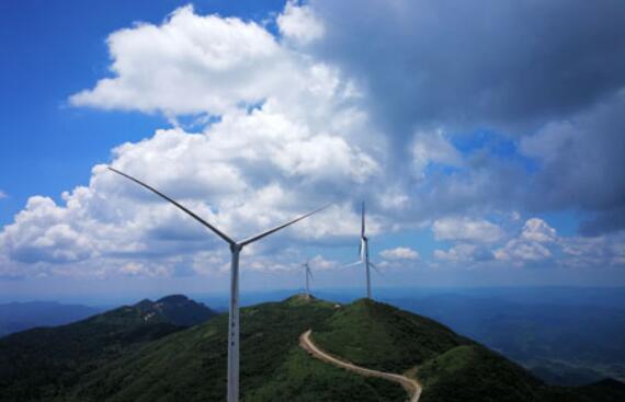 大唐湖南分公司:登高驭风 守望绿色新发展