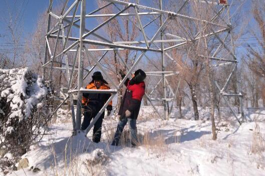 国网阜康市供电公司雪后清理树障畅通电力通道